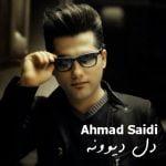 دانلود موزیک ویدئو جدید احمد سعیدی با نام دل دیوونه