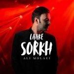 Dawnload Song Ali Molaei,Ali Molaei,Dawnload Music Laake Sorkh From Ali Molaei,Dawnload New Music Ali Molaei Called Laake Sorkh