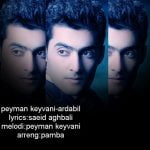 Dawnload Music Ardabil from Peyman Keyvani,Dawnload New Music Peyman Keyvani Called Ardabil