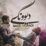 Saeid Moradi,Dawnload Music Divoonegi From Saeid Moradi,Dawnload New Music Saeid Moradi Called Divoonegi