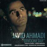 دانلود آهنگ جدید جاوید احمدی با نام دیوونه تر با متن