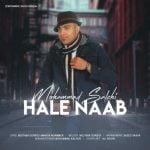 متن آهنگ حال ناب از محمد صالحی,کد آهنگ حال ناب از محمد صالحی برای وبلاگ