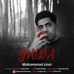 دانلود آهنگ جدید و شیرین محمد ضیایی با نام یلدا