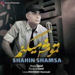 دانلود آهنگ جدید شاهین شمسا با نام تمومش میکنم