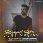 دانلود آهنگ جدید محمد مجلسی با نام گل مریم