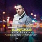 دانلود آهنگ جدید سعید مردانی با نام شب بارونی
