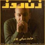دانلود آهنگ جدید حامد سیفی پور با نام زن روز