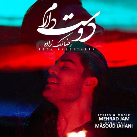 دانلود آهنگ دوست دارم از رضا ملک زاده,متن آهنگ دوست دارم از رضا ملک زاده