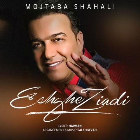 دانلود آهنگ جدید مجتبی شاه علی با نام عشق زیادی