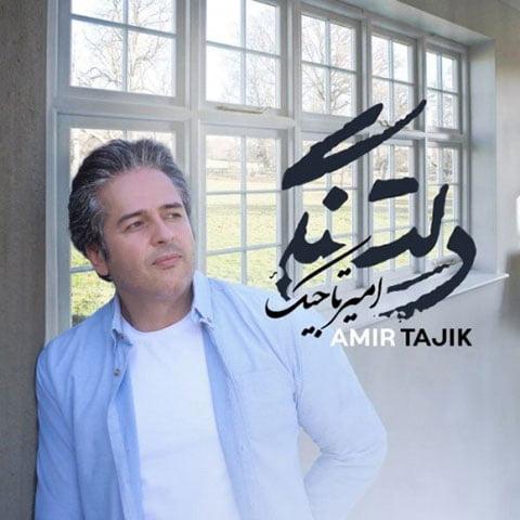 دانلود آهنگ جدید امیر تاجیک با نام دلتنگی